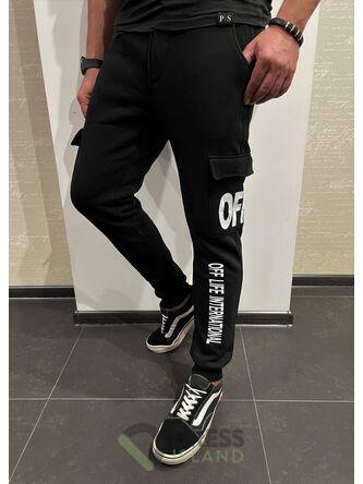 Спортивные штаны GLR Sport флис (1017-1)